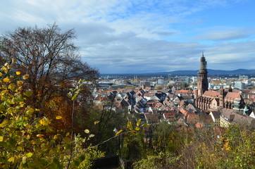 Blick auf Freiburg im Herbst