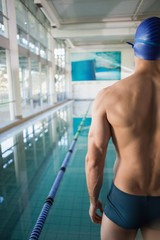 Rear view of shirtless swimmer by pool at leisure center