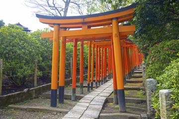 Rows of Torii gates, Nezu Shrine, Bunkyo, Tokyo, Japan.