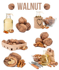 set of seven compositions walnut isolated