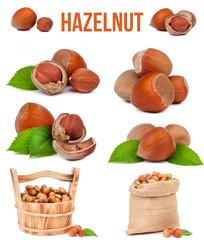 set of six compositions hazelnut isolated