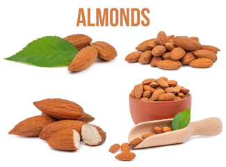 set of four compositions almonds isolated