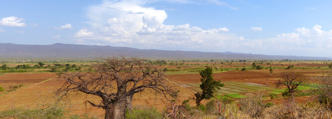 Panorama Landschaft am Lake Eyasi (Salzsee) Mangola Tansania