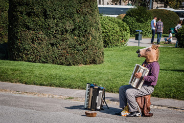 Horse playing accordion