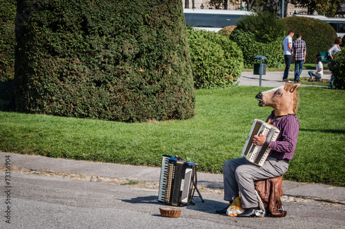 canvas print picture Horse playing accordion
