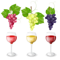Different varieties of grapes and glasses of wine