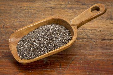 scoop of chia seeds