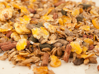 sportive muesli with corn flakes for horses. close up