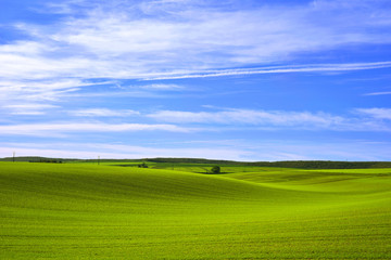 Tapis vallonné des campagnes de l'Yonne, Bourgogne