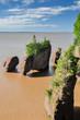Hopewell Rocks at high tide, Canada