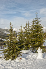 Snowman and spruces in mountains