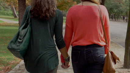 Homosexual couple walking in the park and holding hands, steadyc