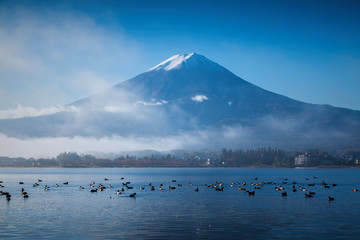 Mountain Fuji and Kawaguchiko lake with morning mist in autumn