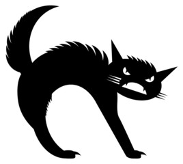 Angry black cat image