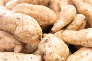 tubercules de patates douces