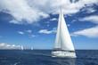 Sailing. Boat in sailing regatta. Luxury yachts.
