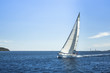 canvas print picture - Sailing. Boat in sailing regatta. Luxury yachts.