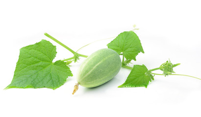 green cucumber with leaves isolated on white