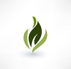 Leaf icons. Eco concept. Logo design.