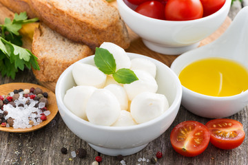 fresh mozzarella and ingredients for a salad, close-up