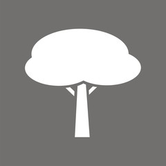 Icono árbol pino piñonero FO