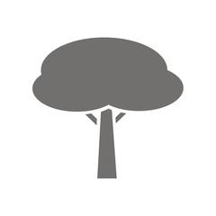 Icono árbol pino piñonero FB