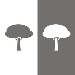 Icono árbol pino piñonero BN