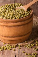 Raw beans mung in bowl closeup. vertical