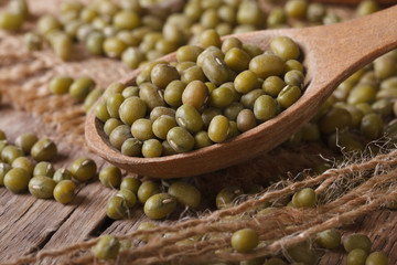 Raw green mung bean in wooden spoon closeup on the table