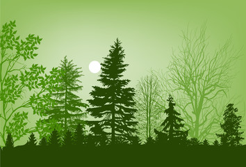 green trees in forest illustration