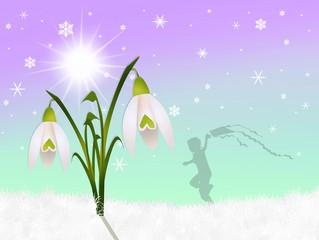 snowdrop in winter