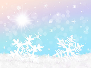 snowflake in winter