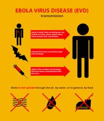 Ebola transmission infographic
