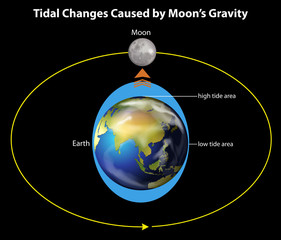 Tidal changes