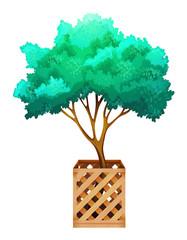 A fenced tree