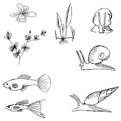 Aquariums image set
