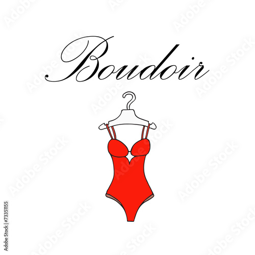 Vector illustration with beautiful lingerie - 73351155