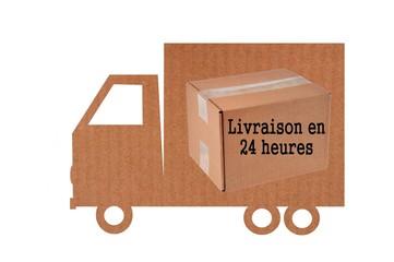 Camion en carton de livraison en 24 heures