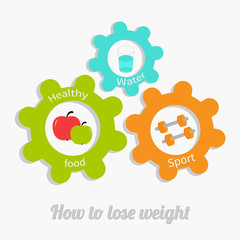 Colorful cogwheel gear set with water, apple, dumbbell