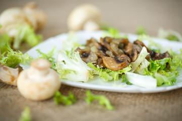 warm salad with mushrooms