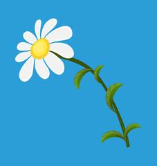 White Daisy Vector Element