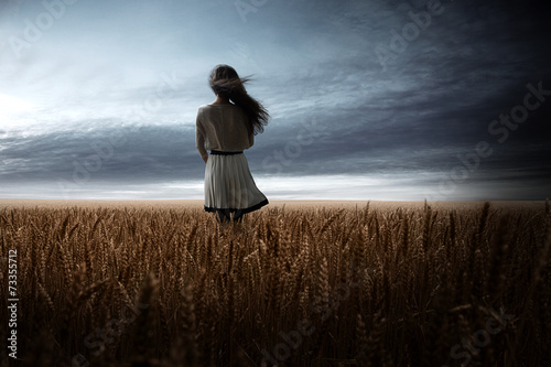 Girl in Wheat Field - 73355712