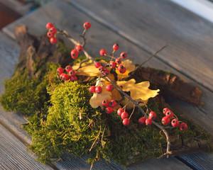 moss and viburnum