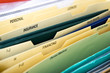 Close up of domestic personal files in expanding pocket folders - 73357931