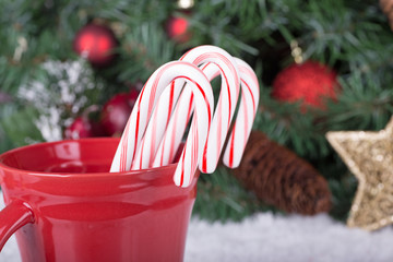 Candy Canes in a Cup