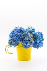 Hydrangea flower bouquet isolated
