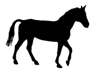 Horse Animal Shape