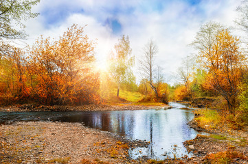 Mountain stream, forest autumn landscape at sunset