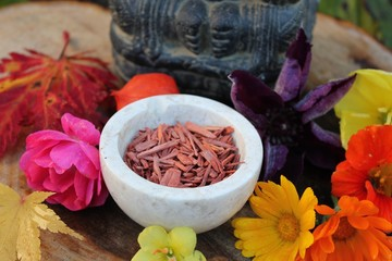 Altar Götterfigur Ganesha mit rotem Sandelholz und Blumen