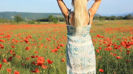 girl on the poppy fild